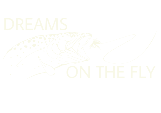 Dreams On the fly